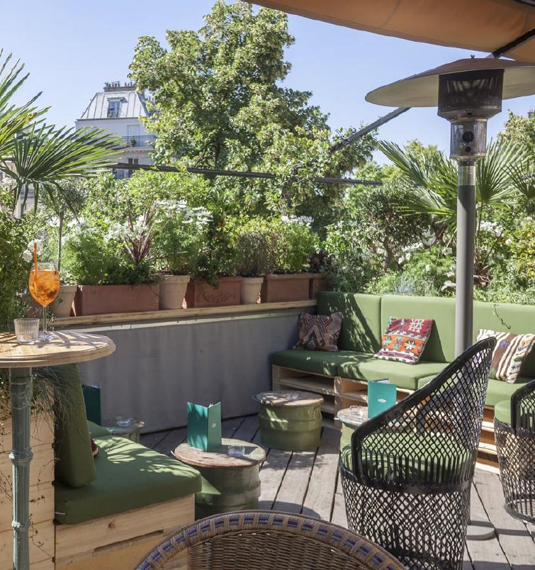 privatisation rooftop auteuil paris 75016. Black Bedroom Furniture Sets. Home Design Ideas