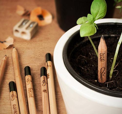 Le développement durable à porter de vos évènements