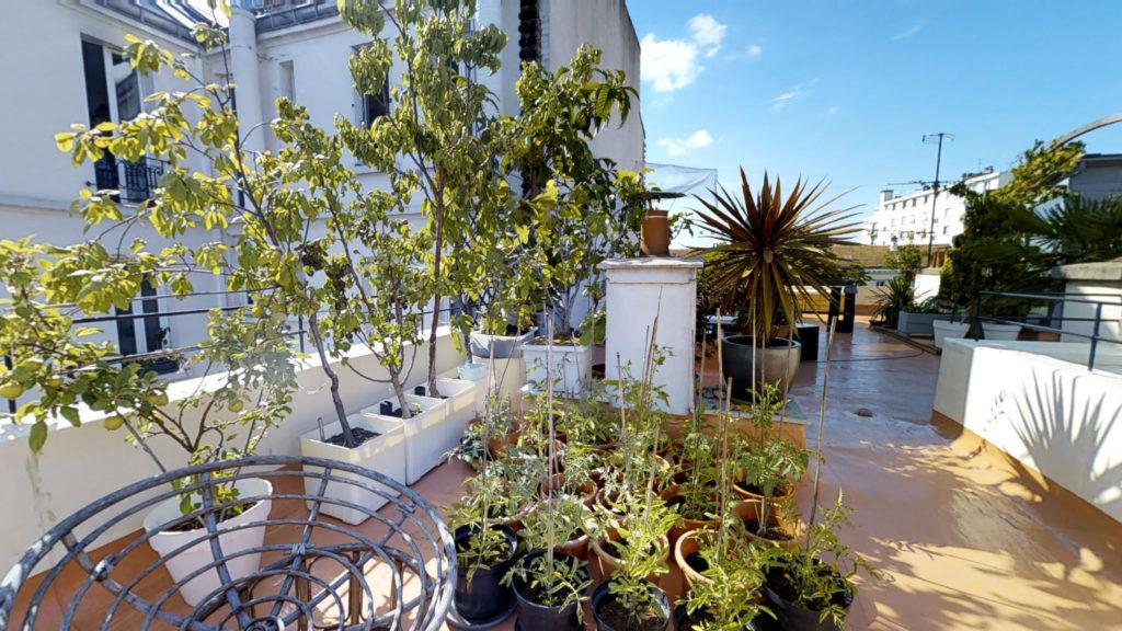 rooftop d'irma